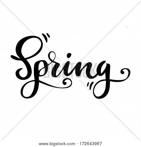 Spring greeting card. Vector isolated illustration: brush calligraphy, hand lettering. Inspirational typography poster