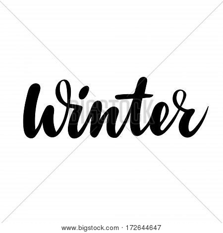 Winter greeting card. Vector isolated illustration: brush calligraphy, hand lettering. Inspirational typography poster