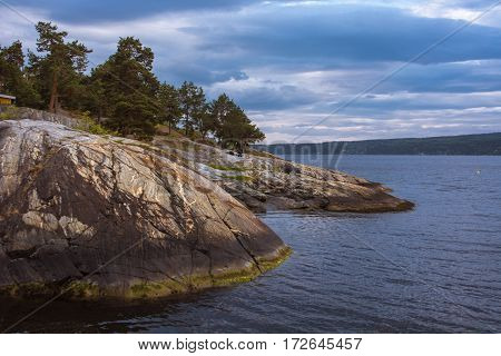 Beautiful Norwegian colorful seascape with a pine trees at rocky coast and blue sky at the sunset