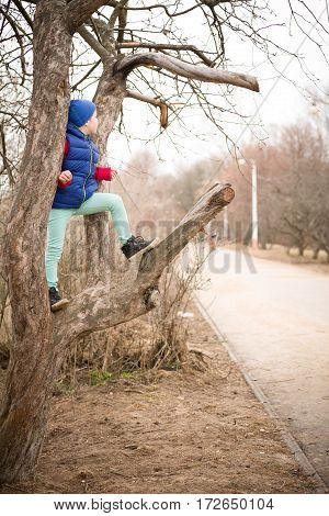 Cute kid boy sitting on the big tree in the park on a spring day. Child climbing the tree in the city garden. Active boy walking. Lifestyle.