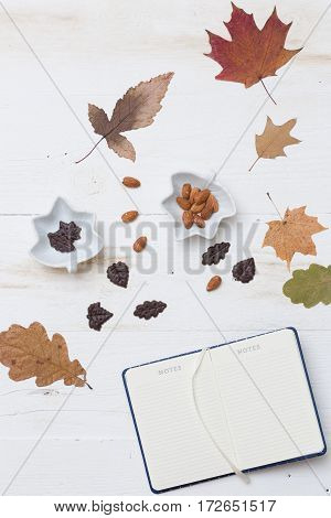 Top view on autumn background: leaves chocolate nuts on wooden white board.