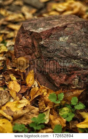 Red Stone Lying On The Ground, Laid By Autumn Leaves