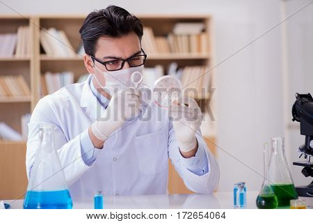 Doctor working in the lab