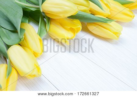 Yellow bouquet of tulips on white wooden background. Spring - poster with free text space.