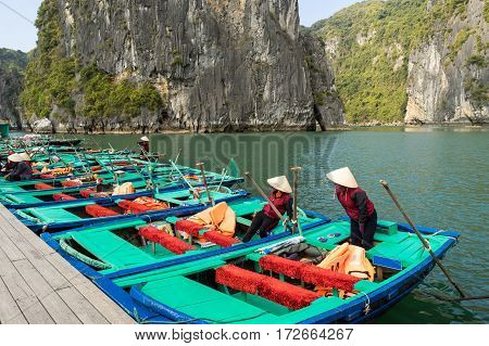 Tourist boat parking at the Halong Bay Vietnam