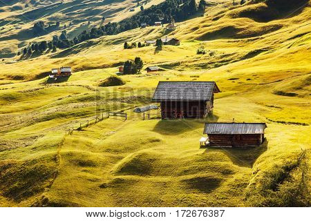 Aerial view of the alpine hills in sunlight. Great and gorgeous scene. Location place National Park Gardena valley, Seceda peak, Dolomiti. South Tyrol, Italy, Europe. Discover the world of beauty.