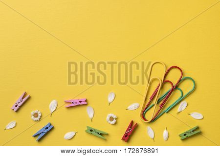 Spring or summer background with copy space for text: chamomiles and petals many bright multicolored clothespins big colorful paper clips. Top view. Flat lay.