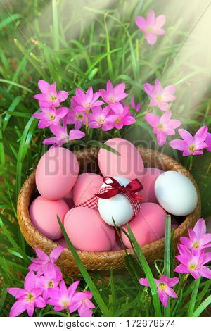 Easter eggs in Fresh Green Grass and pink spring Flowers. Sunlight. Festive decoration