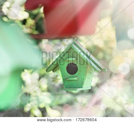 spring outdoors sun light flowers background easter nature . wooden green bird house. springtime spring easter
