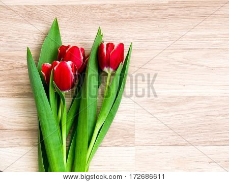 fresh spring tulips flowers on a wooden background