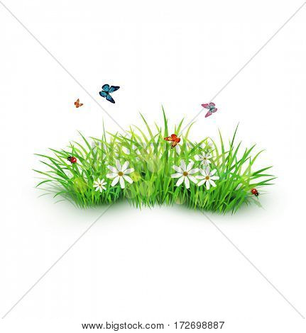 element for design. Green grass with white flowers, butterflies and ladybug. isolated on white background