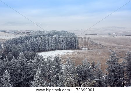 snowy trees in the mist at the morning mountains landscape