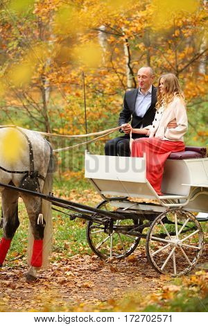 Happy man and woman are in coach with horse and hold reins in yellow autumn park
