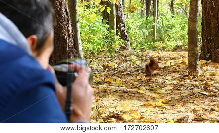Man (out of focus) shoots wild squirrel in sunny autumn forest