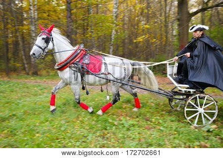 Coachman in cloak sits in coach with horse and hold reins in autumn park