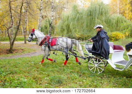 Coachman in black cloak and hat rides in coach with horse in autumn park