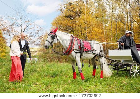 Happy couple stand near coach with horse and coachman in yellow autumn park