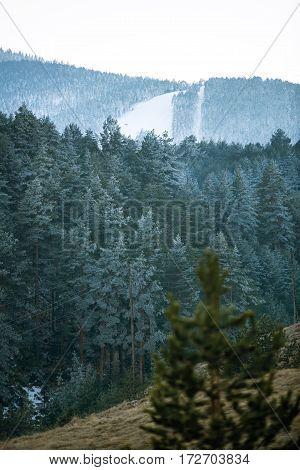 Beautiful white snowy winter in foggy ski mountains landscape