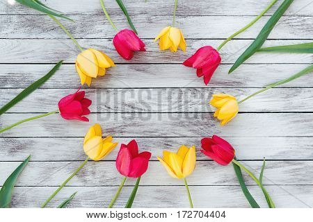 Colorful tulips on the wooden planks. Space for text.