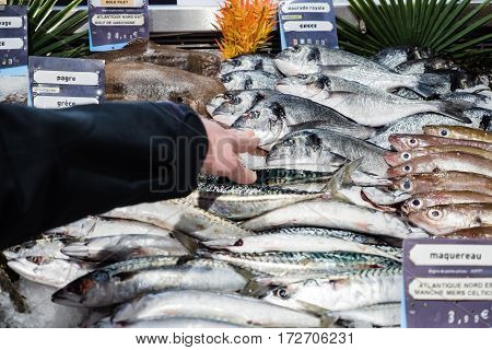 Woman customer hand point at fish stall fish counter to the fresh Gilt-head bream fish daurade