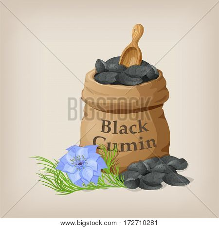 Nigella sativa Black cumin in small sack. Vector illustration.