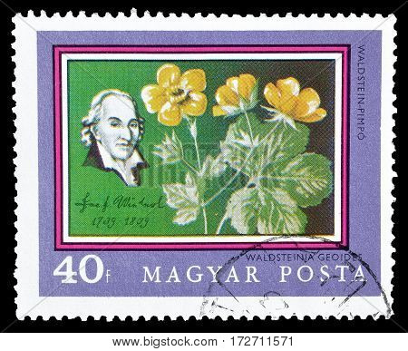 HUNGARY - CIRCA 1971 : Cancelled postage stamp printed by Hungary, that shows Josef Jacob Winterl and flowers.