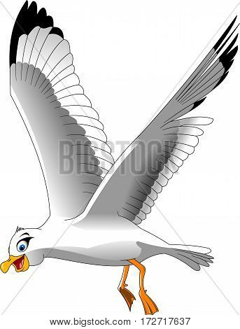Cartoon smiling seagull on white background vector and illustration