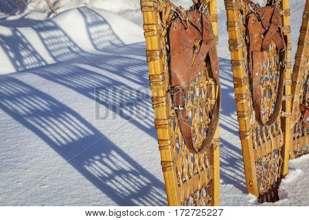 detail of vintage wooden Bear Paw  snowshoes with leather binding in snow with shadow