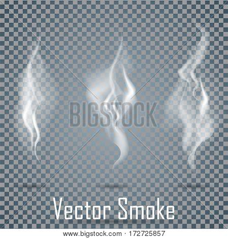 Delicate white cigarette smoke waves set on transparent background vector illustration
