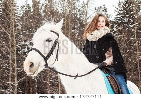 Nice Girl And White Horse Outdoor In Snowfall In A Winter