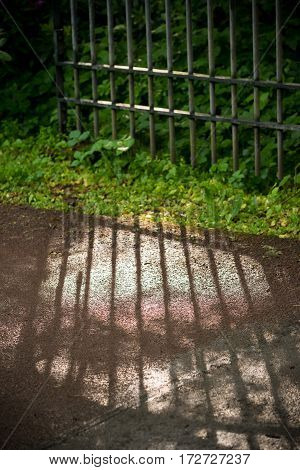 old iron gate with its shadow on the street