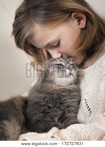 Girl and cat. Young girl kisses a gray cat