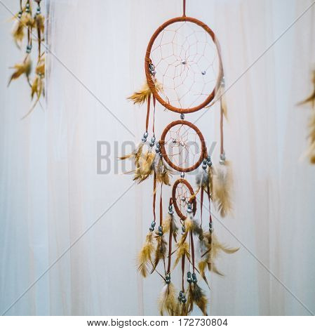 Wedding Arch Decoration. Wedding Arch Decorated In Boho Style.