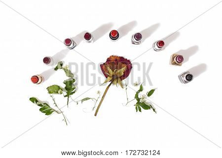 Glossy lipstick isolated on white background. Decorative cosmetics for lips. Dried flowers on a light surface. View from above . Dry rose.