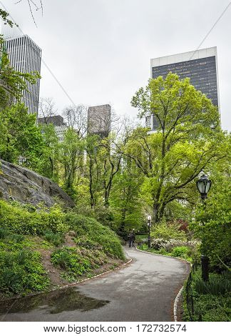 NEW YORK USA - May 04 2016: Alley in the central park of NYC. Central Park and Manhattan Skyline. Midtown Manhattan skyline view from Central Park on an overcast day.