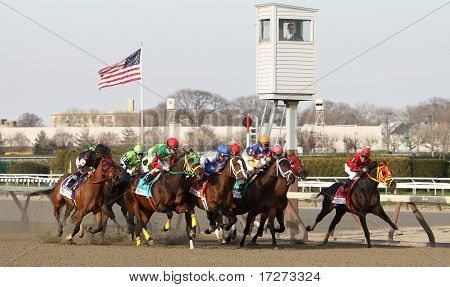 Field For The 2011 One Million Dollar Wood Memorial