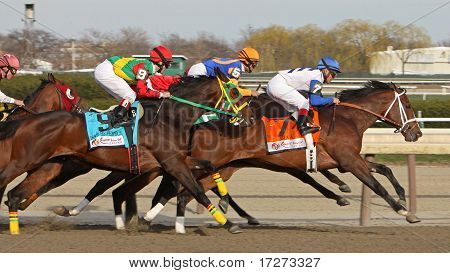 2011 Wood Memorial Stakes