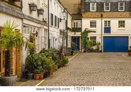 corner of the courtyard in front of the beautiful old buildings in low-rise on the sidewalk exotic potted plants stylish street lamps paving stones on the road urban architecture