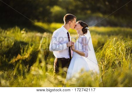 Strong love. New family. Groom and bride  in a white wedding dress on a background of nature. Wedding photography. Happy family on nature. To love each other