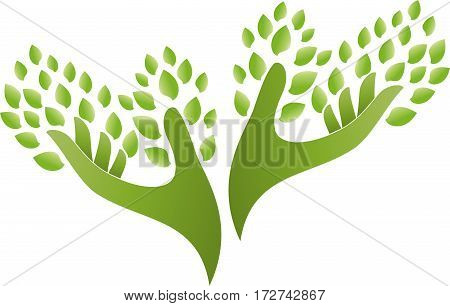 Two hands and leaves, hands as a tree, naturopath and nature logo