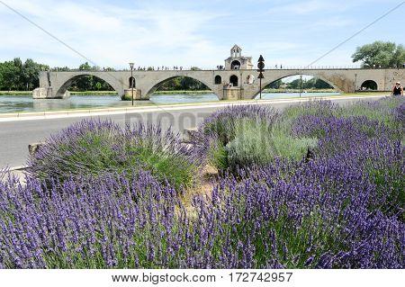 St-benezet Bridge At Avignon On France