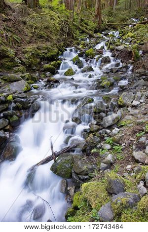 Sol Duc waterfall stream in Olympic National Park.