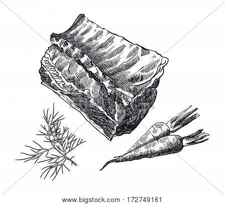 hand drawn sketches of loin on the bone and spices on a white background