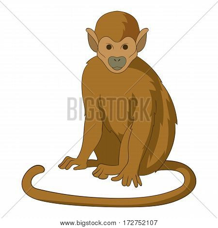 Snub nosed monkey icon. Cartoon illustration of snub nosed monkey vector icon for web
