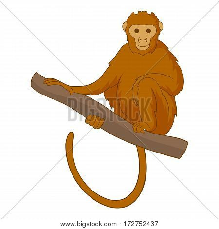 Monkey sitting on a branch icon. Cartoon illustration of monkey sitting on a branch vector icon for web
