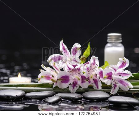 spa concept –lying on orchid and long leaf ,candle, salt in bottle