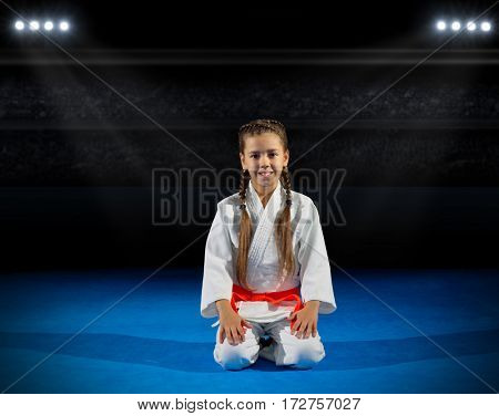 Girl martial arts fighter in sports hall