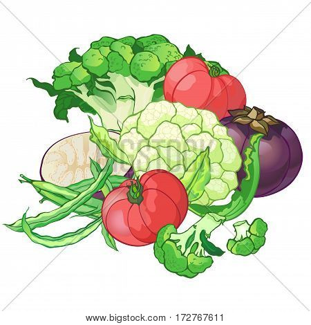 set with broccoli, green string beans, tomatoes, cauliflower and round eggplant