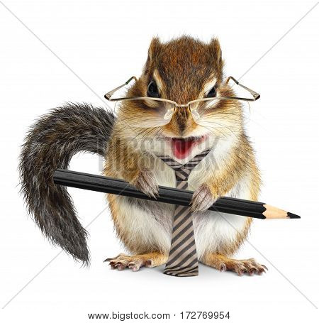 animal businessman chipmunk with tie and pencil
