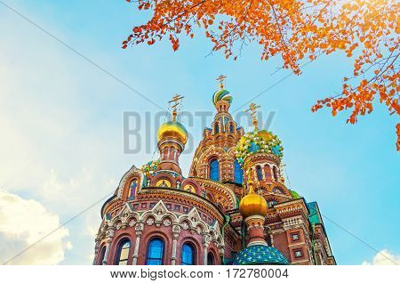 St Petersburg Russia - Cathedral of Our Savior on Spilled Blood. Architecture landmark of St Petersburg Russia. St Petersburg Russia  landmark